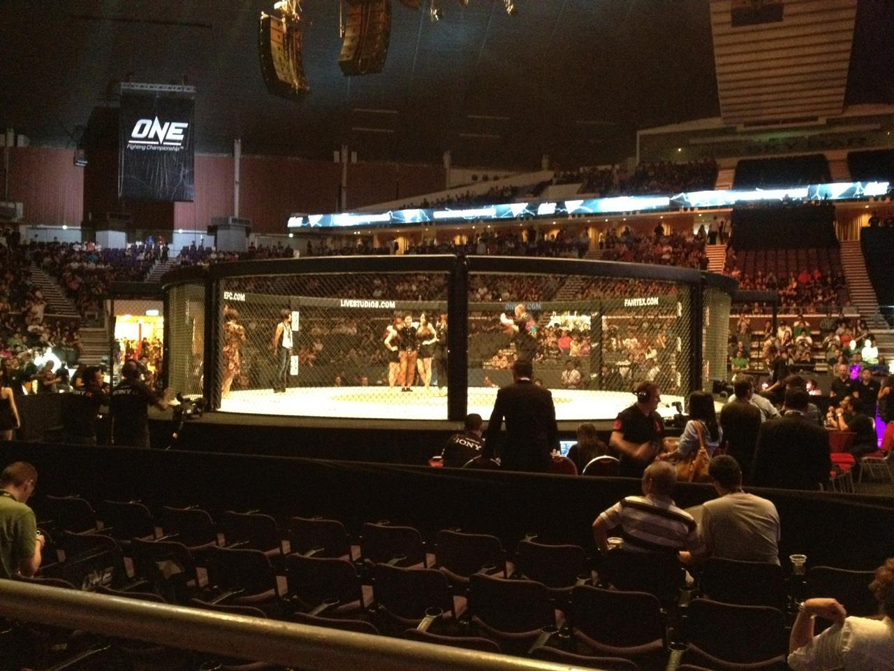 One Fighting Championship War of the Lions