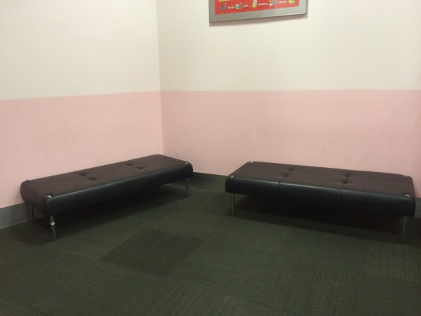 Two Long Sofas at the Entrance