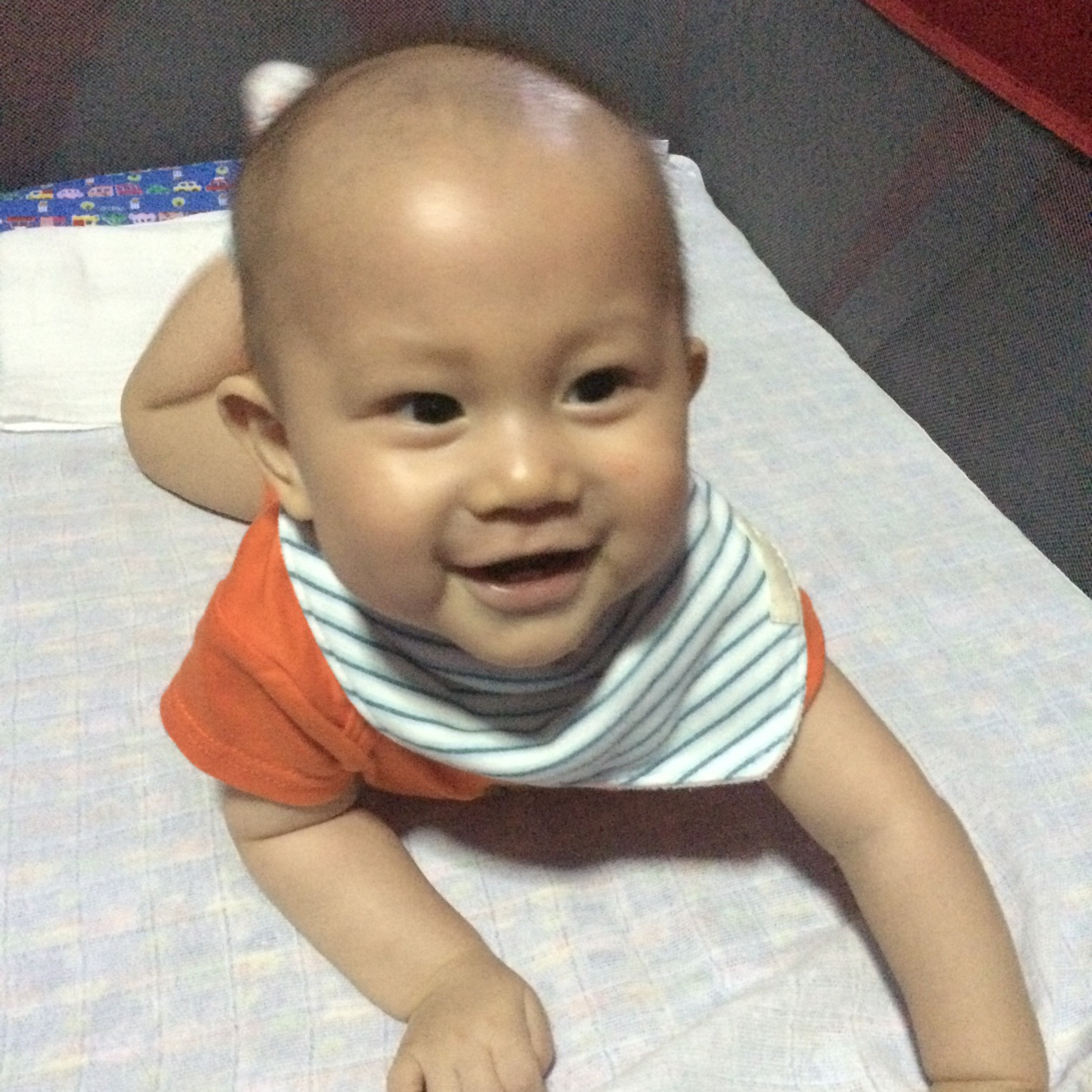 Ardan in his play pen